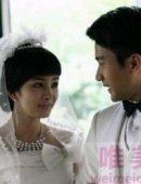 杨幂刘恺威结婚照,杨幂刘恺威同居怀孕是真的吗