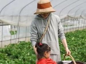 孙俪带孩子摘草莓 霸气皇后娘娘告诉你怎样