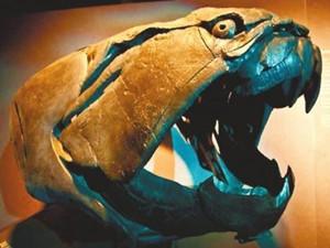 史前第一可怕巨兽 霸王龙竟然不是第一令人