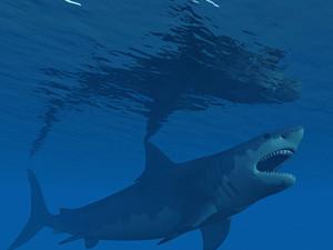 巨齿鲨和抹香鲸谁厉害 巨齿鲨大战史前抹香鲸看傻眼