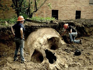 考古界不敢公开的秘密是什么 巨人遗骸又是怎么回事