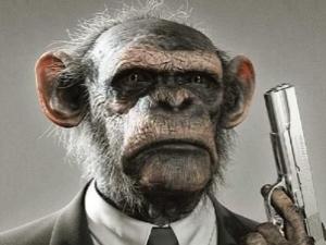 人类根本不是进化来的 为什么说人类2012年就已经死了