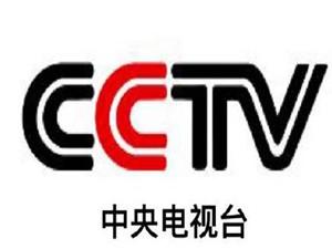 骂人cctv是什么意思 出处被揭竟有不为人知的一幕