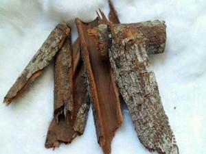 安哥拉树皮怎么吃 安哥拉树皮的功效是什么