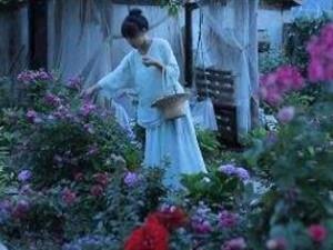 李子柒家的院子在哪里 李子柒家的院子全景