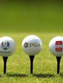 高尔夫球!————  一种贵族运动!