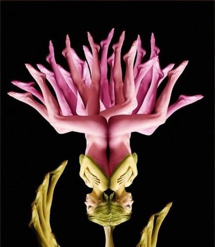 Cecelia Webber 创作的人体花卉艺术作品