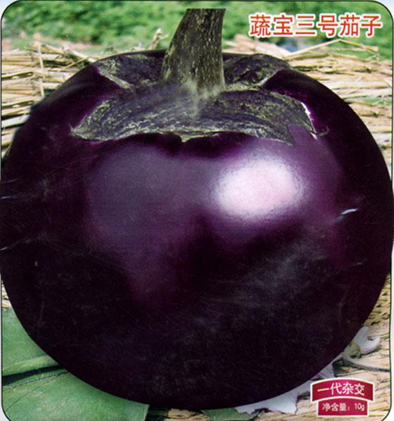 世界最大的茄子