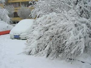 """全国即将迎来大范围雨雪 气温则会""""跳水式""""下降"""