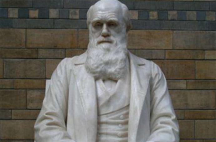 男子撞脸达尔文