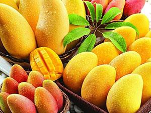 晚上可以吃芒果吗?晚上吃芒果有什么影响?