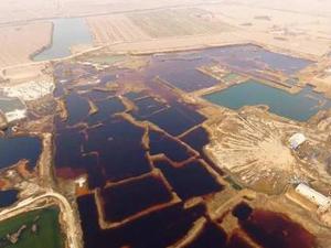 华北工业污水渗坑 五颜六色污水坑最大一处达17万平方米