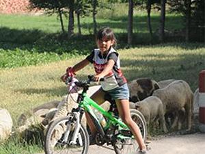 因崇拜《西游记》台湾6岁女孩骑行千里 重走