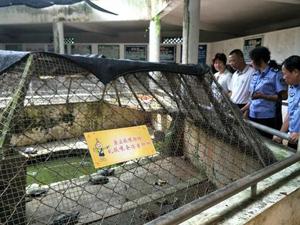 海口动物园成炼狱 园内尸横遍野动物大多饿