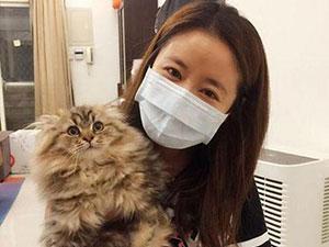 林心如晒怀抱可爱小猫 女神素颜颜值也在线