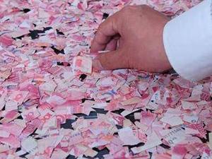 5岁熊孩子撕钱玩 血汗钱变碎片现场壮观父母瞬间傻眼