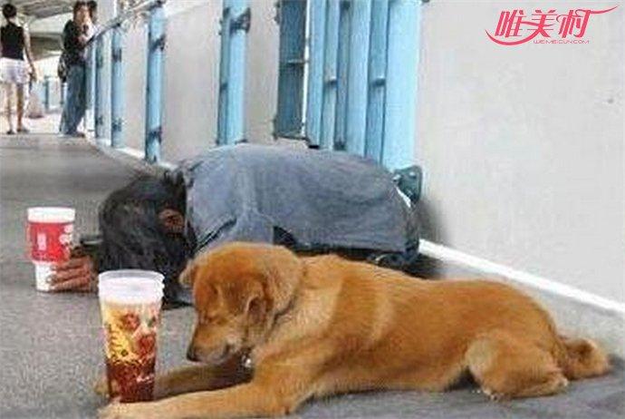 乞丐躺赚13亿
