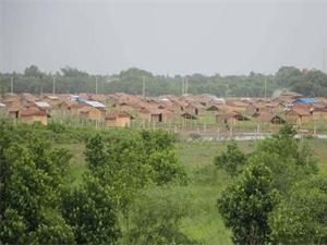 缅甸600人强拆违建村落 土地毒瘤被消除