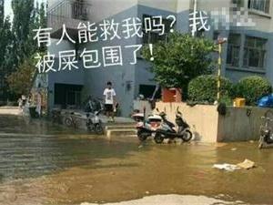 济南大学化粪池堵塞 想逃离学校无处下脚
