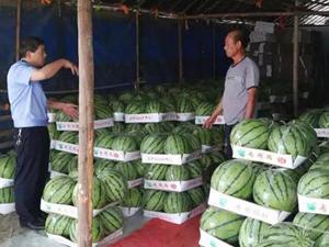 警察帮瓜农卖1.5万斤西瓜 瓜农陷危机民警吆喝卖瓜令人动容