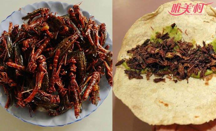 祸害中国几千年虫子变美食