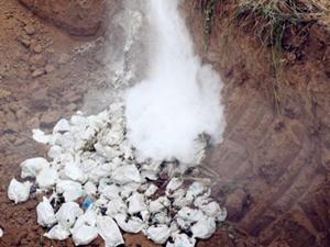 果农滥用催熟药剂 2万多斤葡萄拉掉深埋处理