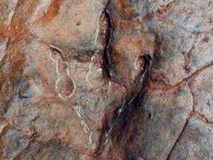 贵州河滩现怪脚印 竟然几千万前的恐龙所留