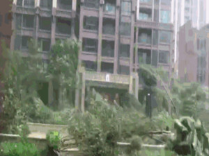"""最强""""天鸽""""已致12人遇难 而新酝酿的台风再次升级"""