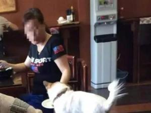 大妈用餐厅盘子喂狗 我行我素不顾他人感受令人恶心