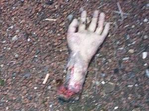 高速公路惊现断肢 断手血淋淋躺路上吓坏路过司机