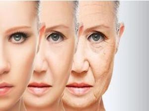 科学家发现抗衰老办法 没有副作用效果显著