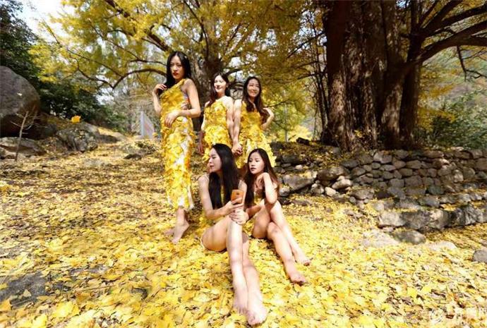 女大学生把银杏叶穿身上