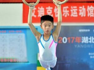 杨阳洋体操赛获奖 网友感慨:奥运体操冠军