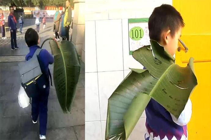 老师要求树叶上写拼音学生扛芭蕉叶上学
