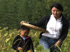 海归女博士当农民 新农业模式同样可以创业