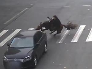 男子骑马闯红灯摔倒 汽车与马相撞吃亏的是谁