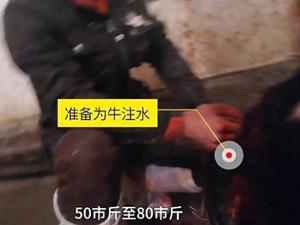 一头牛注水60斤 注入添加剂过程曝光黑心商