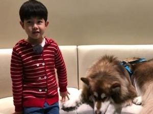 胡可发文调侃沙溢怕狗 儿子安吉却与狗亲密