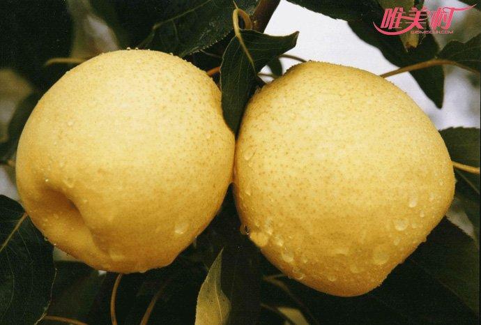 冬天吃水果梨