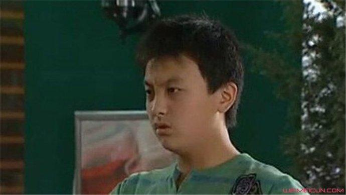 牛骏峰家有儿女演的谁