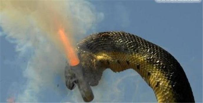 世界第一巨蛇_一亿年巨蟒
