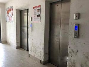 逝者禁止乘电梯 家人抬棺材走17楼引哗然