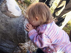 小女孩献吻犀牛怎么回事 小女孩为什么献吻犀牛