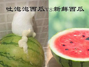 西瓜居然吐泡泡是什么情况 专家解释建议不食用原因引人惊