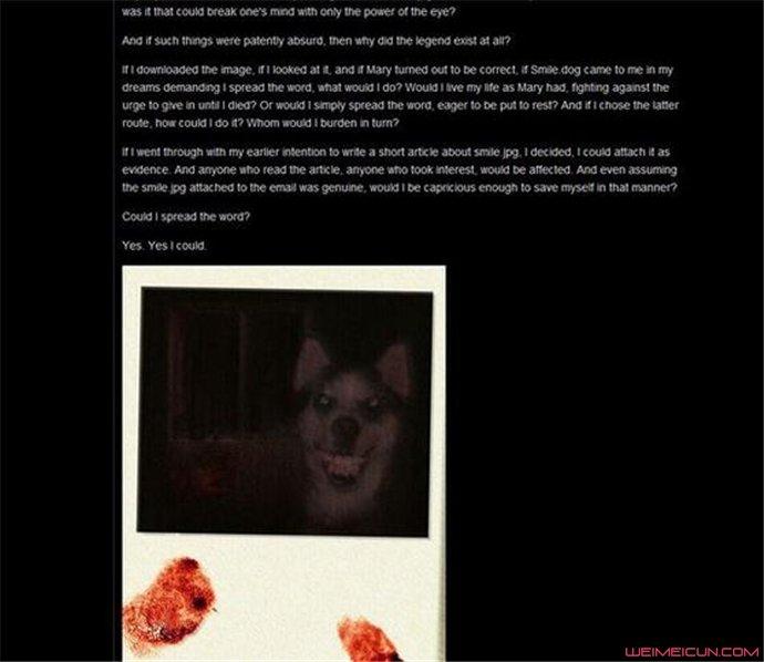 微笑狗事件死了多少人