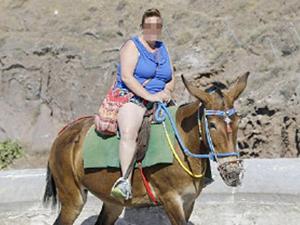 胖游客越来越多 驴子驮着超重游客伤痕累累