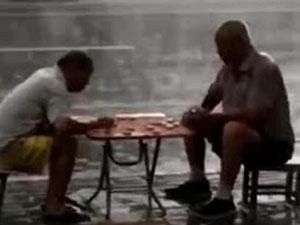 俩大爷暴雨中下棋 现场画面令人费解曝事件