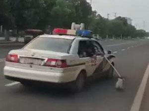 开警车拖拽流浪狗 具体详情被揭原来系好心