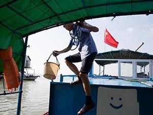 渔民成江豚保镖 背后原因及详细情况被揭开