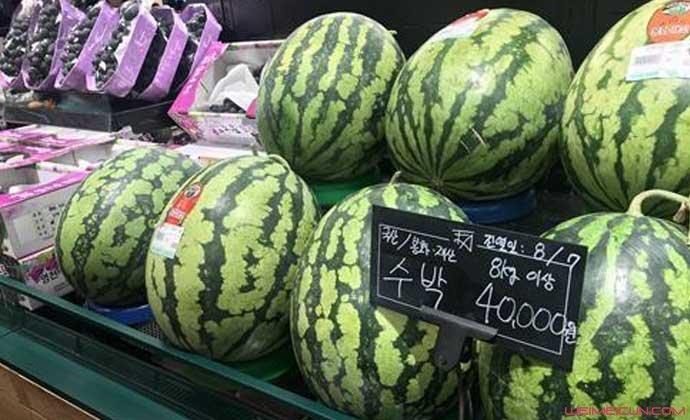 韩国蔬菜水果疯涨